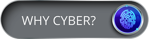 Boton whycyber about us